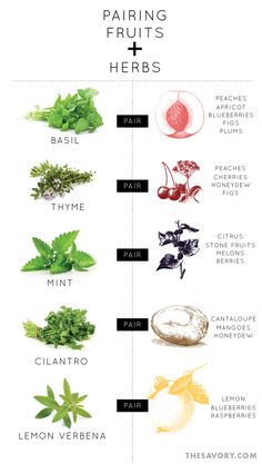 Fruit and Herb Pairing Primer. Basic, new ideas for using herbs and fruit. Herbs aren't just for cooking with! Cooking Tips, Cooking Recipes, Healthy Recipes, Juice Recipes, Detox Recipes, Herb Recipes, Smoothie Recipes, Salad Recipes, Think Food
