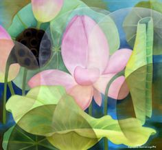 In an Iridescent Land Lotus Pond, Balcony Garden, Tropical Flowers, Watercolor Flowers, Art Images, Iridescent, Oil On Canvas, Plant Leaves, Street Art