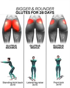 Helpful site charted glute workout at home Full Body Gym Workout, Gym Workout Videos, Gym Workout For Beginners, Fitness Workout For Women, Fitness Routines, Fitness Workouts, Body Fitness, At Home Workouts, Fitness Motivation