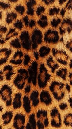 if u ss on town something cheetah print u shoul! cheetah print is comin back.if u ss on town something cheetah print u shoul! cheetah print is comin back!