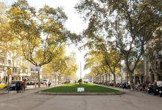 Paseo de Gracia en otoño, #autumn  #terrace   #cooking    #dinners    #barcelona   #terrace   #dinners  #cenas  #events
