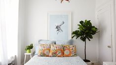 Fiddle Leaf Fig Care – Growing Guide, How To Pot Plants Fiddle Leaf Fig Care – Guia de cultivo, Como plantar plantas Decor, Room, Bedroom Plants, Trendy Plants, Room Interior, Home Decor, Indoor, Fiddle Leaf, Indoor Plants
