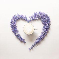 2,586 отметок «Нравится», 242 комментариев — Yoko (@atelierjuno) в Instagram: «Feb.20.2017 ・ ・ ・ Happy New week my dear friends Break time with hyacinth heart☕️ ・ ・ ・…»