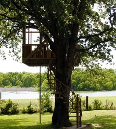 My dad built us an amazing tree house...geez we had so much fun in it. We attempted to sleep in it the one night and didn't even make a few hours :) before we made mayday calls on the radio
