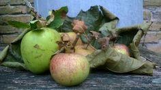 Stil leven met appels.