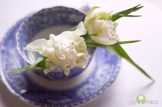 Flower photograph - White fine art photo - spring photo, white tulips, blue, white and green, home decor shabby chic, vintage style