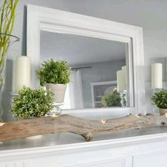 driftwood in combination with IKEA pots and faux plants. great idea for a hallway or even a living room