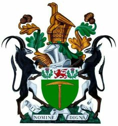 Arms: Vert, a pick Or and on a chief Argent a lion passant Gules . Zimbabwe History, Zimbabwe Africa, South African Air Force, Namibia, Military Pictures, Thinking Day, All Nature, Banner, My Heritage