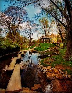 ~~Garden ~ Botanic Garden, Belgrade, Serbia by Katarina 2353~~
