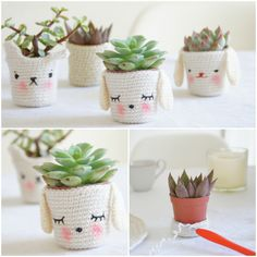 Knitted planters #DIY, #Knit, #Planters, #Wool
