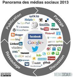 Panorama des médias sociaux 2013