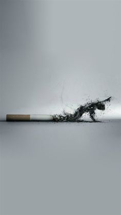 My iPhone 5 Wallpaper - the one I just liked! anti smoking Smoking kills, stop encouraging people to smoke! Is wrong! Smoke Wallpaper, Iphone 5 Wallpaper, Wallpapers Ipad, Smoking Kills, Anti Smoking, Ads Creative, Creative Advertising, Wallpapper Iphone, Rauch Fotografie