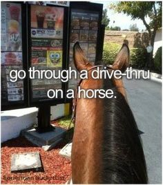 I REALLY want to do this! I love horses so much! They r great and God is the best! Go JESUS CHRIST! ❤️ by manuela