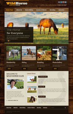 Wild Horse Club & Breeding Bootstrap HTML Template by Dynamic Template