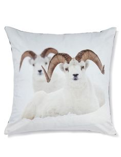 Buy the Snowy Rams Cushion from Marks and Spencer's range. Printed Cushions, Interior Accessories, Digital Prints, Christmas Decorations, Throw Pillows, Gifts, Ireland, Decor Ideas, Fingerprints