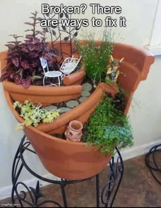 #broken #plant #plantpot #garden #fixed #creative
