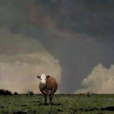 Oh my God, I gotta go honey, we got cow's,  sorry i couldn't resist the Twister movie reference lol!
