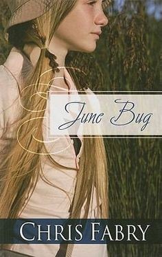 """""""June Bug"""" by Chris Fabry was a 2010 Christy Award finalist in Contemporary Standalone novels."""