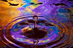 Water_Drop_Photography_Jim_Zuckerman