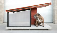 Let your pooch live in the lap of luxury with the Dog Haus Luxury Dog House. This ultra modern dog house uses timeless materials. Luxury Dog House, House Dog, Modern Dog Houses, Cool Dog Houses, Modern Homes, Dog Milk, Niches, Cat Enclosure, Pet Home