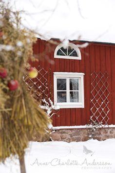Fyra årstider, mitt liv på landet