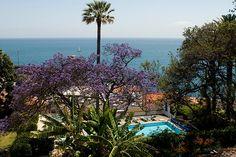Quinta da Penha Franca - Funchal, Portugali - #Finnmatkat Ihastuttava rauhallinen hotelli lähellä Funchalin keskustaa, erityisesti suosittelen puutarhassa olevia huoneistoja. Herkullista ruokaa hotellin omassa ravintolassa!
