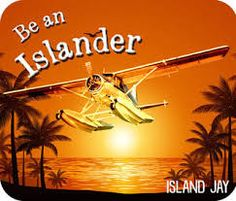 Thank you Island Jay Apparel. Jay, Advertising, Island, Movie Posters, Movies, Block Island, 2016 Movies, Film Poster, Films