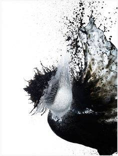 When Ink and Water Mix - Shinichi Maruyama