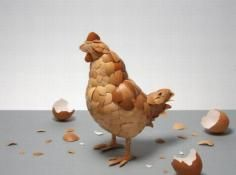 What Came First In This Picture: Photo of egg shells