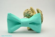 Aqua Blue Polka Dot Pet Collar Bow Tie Attachment , Pet Accessories, Dog Collar, Cat Collar. Puppy, Unique Pet Collar Attachments by HaleysPetBoutique.etsy.com