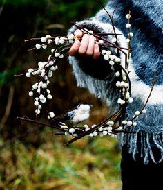 wilgenkatjes-krans met vogel (witte duif?)