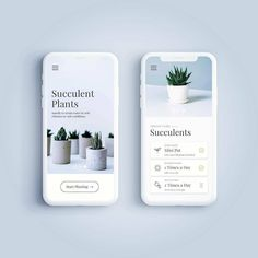 "228 Me gusta, 6 comentarios - @creativroom en Instagram: ""Plant App by Feby Permana [@febbirds] . . . Follow us @creativroom to get creative UI/UX and…"""