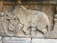 Rich diversity of ancient #SriLankan architecture.  #polonnnaruwa #stonecast #iphone6s #iphonephoto #iphonephotography #elephant #stonecarving #stonecastle #travel #photography #travelphotography #travelgram #trip #explore #beautiful #photooftheday #instadaily #travelling #srilanka #travelblogger #architecture