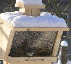 Samonásypné krmítko pro ptáky s plexisklem