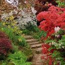 8. Planejando seu jardim: Princípios de Paisagismo -