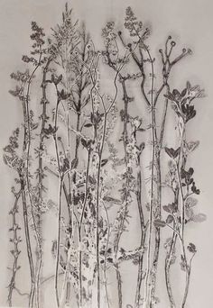 field and hedgerow: Exhibiting Really pleased to have all three of my submissions shortlisted and exhibiting in the Flourish Award for Excellence in Printmaking, Yorkshire Saturday 27 September – 15 November 2014