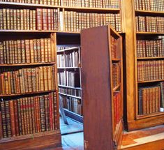 Ever wanted a hidden door when you were younger? I sure did, and still do as an adult. As a kid you need a secret spot to hide with your friends to get away from the parents, and as a parent you need ... Beautiful Library, Dream Library, Home Libraries, Hidden Spaces, Hidden Rooms, World Library, Library Books, Bookshelves, Bookcase Door