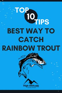 Keep in mind that Rainbow Trout have great eyesight and spook easily. The more information you have in addition to knowing the top tips and techniques will help you land that Rainbow Trout. Trout Fishing Tips, Rainbow Trout, Best Fishing, Hunting, Tops, Fighter Jets