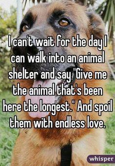 Adoption goals. What a wonderful idea. #dogs #doglovers