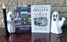 """Join Mark Rees - host of the """"Ghosts & Folklore of Wales"""" podcast and author of books such as """"Curious Wales"""" - for a journey through the """"most haunted"""" locations in Wales. Ghosts of Wales: """"Spine-chilling reports of two-headed phantoms, murdered knights and spectral locomotives filled the pages of the press."""" Paranormal Wales: """"Mark Rees takes the reader on a spine-chilling journey to dozens of locations, which include well-known tourist landmarks and more secluded spots off the beaten track."""" Most Haunted, Haunted Places, History Of Wales, Old Pub, Ghost Hunters, Hair Raising, Ghost Stories, Weird And Wonderful"""