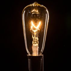 Our Incandescent 7 Watt base globe light bulbs can be paired with any of our cord sets! Patio String Lights, Globe String Lights, Patio Lighting, Bulbs, Light Bulb, Base, Antiques, Cord, Indoor