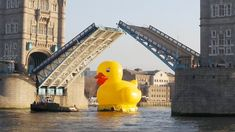 Florentijn Hofman created the Rubber Duck which sailed down the Thames in 2012.