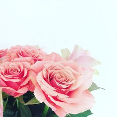 Love the smell of fresh roses