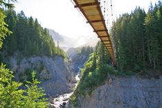 The Tahoma Creek Suspension Bridge In Washington