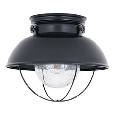 Sea Gull Lighting Sebring W Black Outdoor Flush-Mount Light at Lowe's. The Sea Gull Lighting Sebring one light outdoor ceiling fixture in black creates a warm and inviting welcome presentation for your home's exterior. Led Flush Mount, Flush Mount Lighting, Flush Mount Ceiling, Wall Sconce Lighting, Ceiling Lighting, Hallway Lighting, Lighting Store, Sconces, Lighting Direct