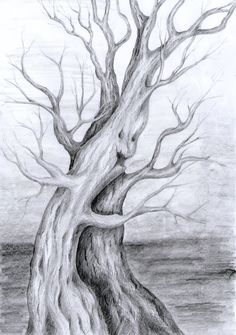 Fantastyczne drzewa rysowane ołówkiem