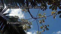 PENSAMENTOS                                                                       Claudio Alves de Oliveira