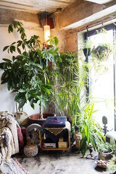 Love this lush environment. Marina Burini – the selby - awakening sacred flow