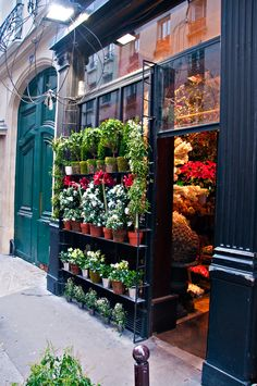 Saint Pères Fleurs, Flower shop, Paris France More news about Paris on Cityoki http://www.cityoki.com/en/cities/paris/ Plus d'infos sur Paris sur Cityoki ! http://www.cityoki.com/fr/villes/paris/