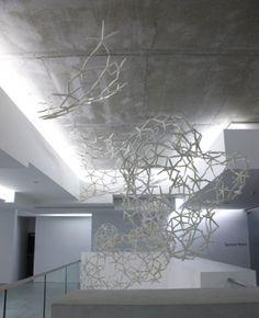 Maria Fernanda Cardoso - Starfish, 2011, Museum of Contemporary Art, Sydney